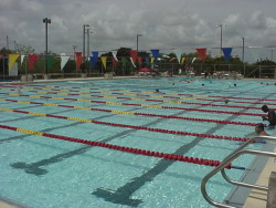 Pool of Tamiami Aquatic Center