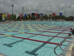 Pool of Tamiami Aquatic Center