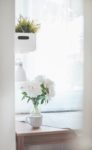 Clean Indoor Air Is Safer Indoor Air